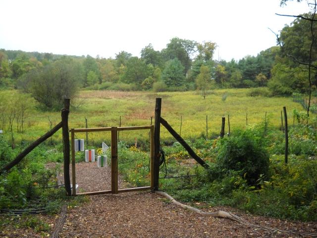 Farming in Mount Kisco New York  |   Mount Kisco NY Real Estate by robert paul